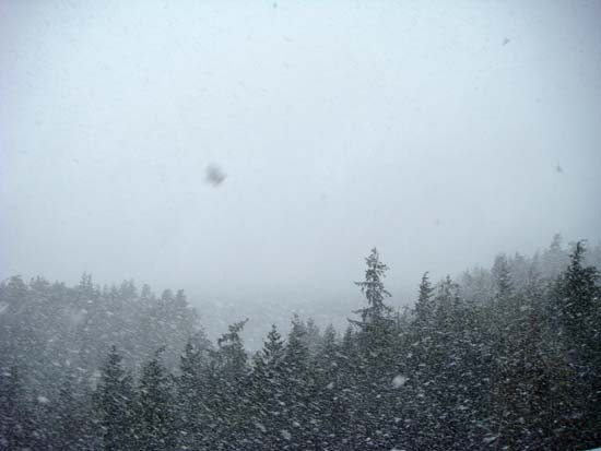 Snowstorm in Ketchikan, Alaska. March 21, 2008.