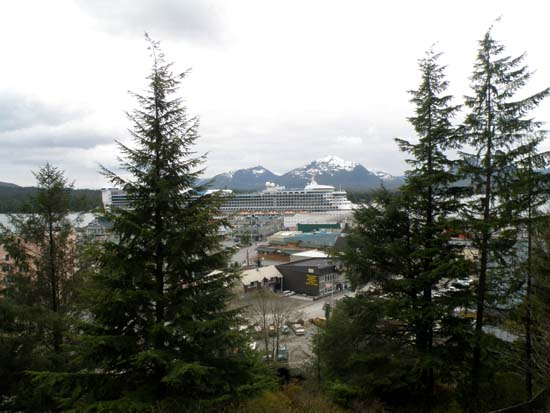Star Princess seen through trees in Ketchikan, Alaska May 6, 2008.
