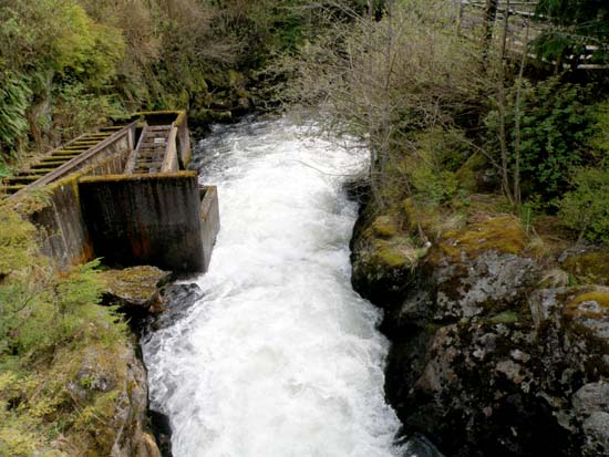 Ketchikan Creek fish ladder.