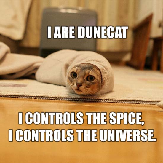 I are dunecat I controls the spice, I controls the universe.