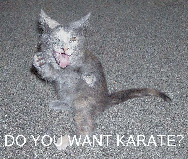 Do you want karate?