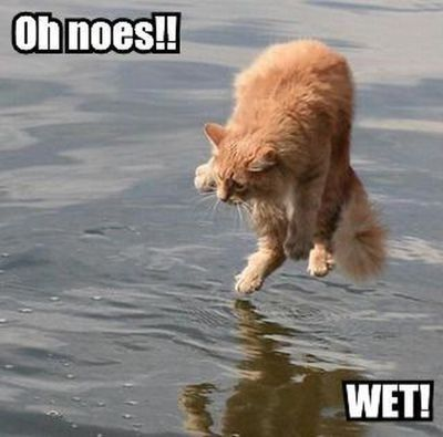 oh noes!! Wet!