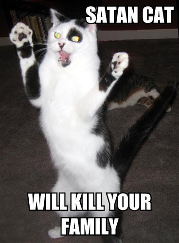 Satan cat / Will kill your family.