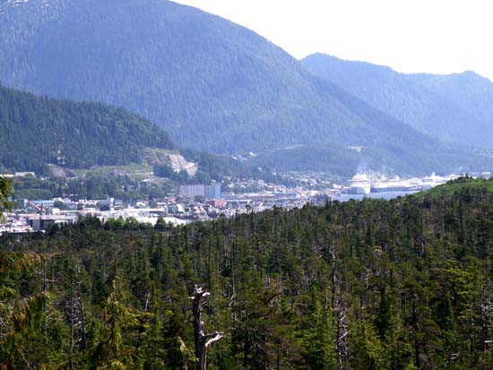 View of Ketchikan from Gravina Island.