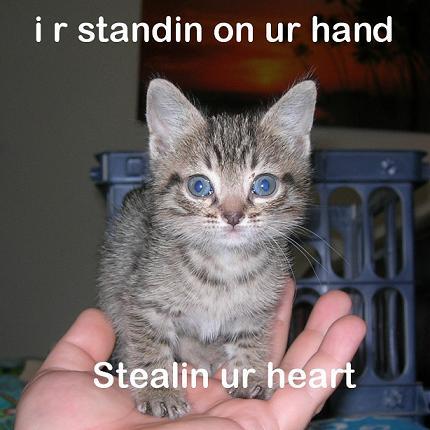 I r standin on ur hand Stealin ur heart