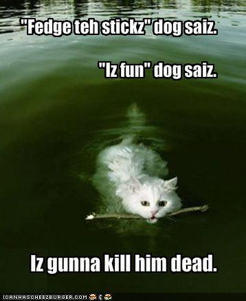 'Fedge teh stickz' dog saiz. 'Iz fun' dog saiz. Iz gunna kill him dead.