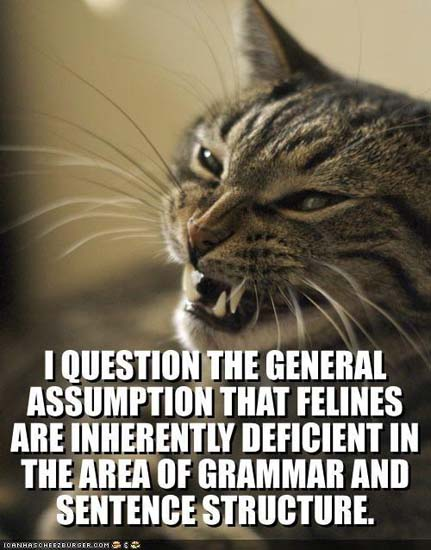 I question the general assumption that felines are inherently deficient in the area of grammar and sentence structure.