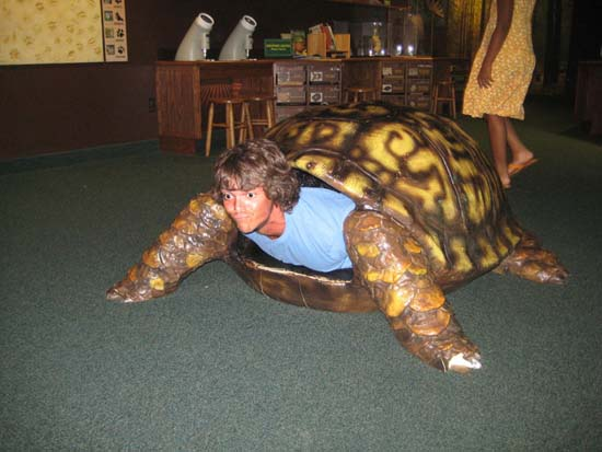 Teenage Mutant Fail Turtle