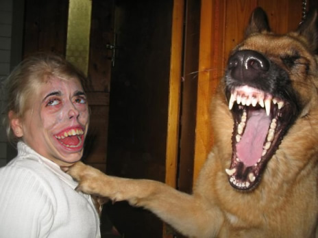 Messed up human face and a dog. How else to describe it?