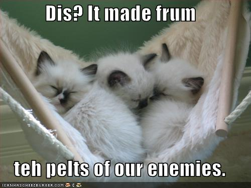 Dis? It made frum teh pelts of our enemies.