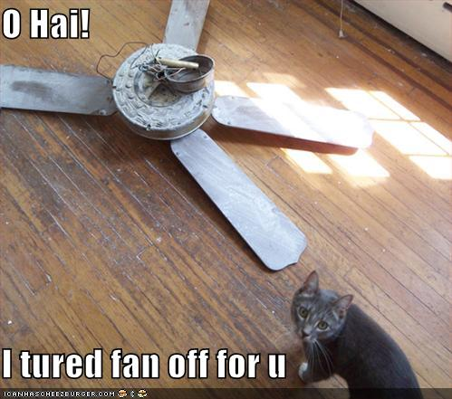 O Hai! I tured fan off for u.