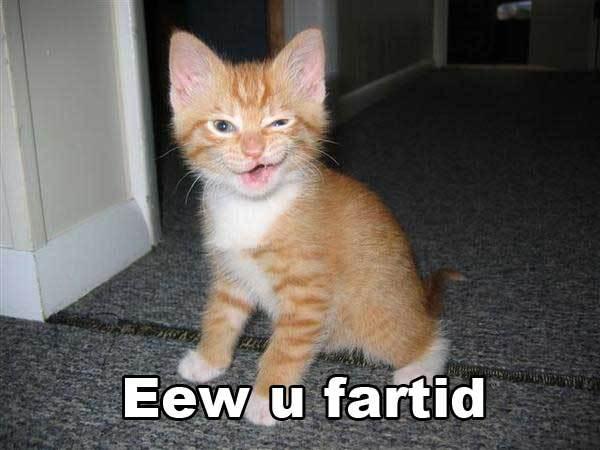 Eew Fartid