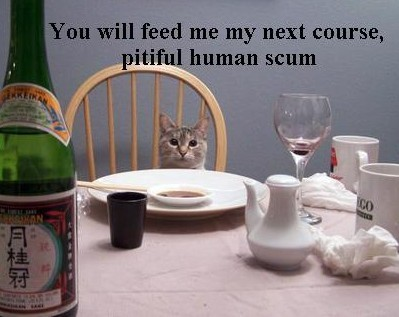 You will feed me my next course, pitiful human scum