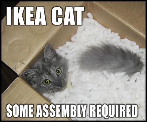 IKEA Cat / Some assembly required