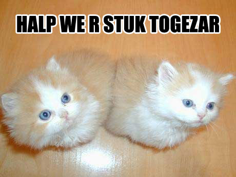 Halp we r stuk togezar