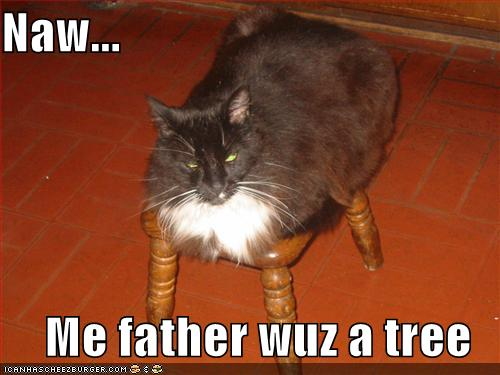 Naw... Me father wuz a tree