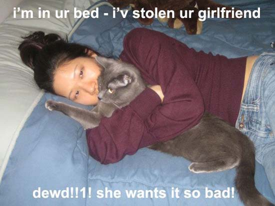 I'm in ur bed - i'v stolen ur girlfriend / dewd!!1! she wants it so bad!
