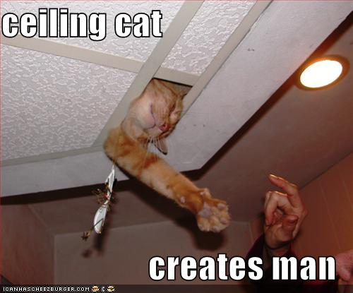 Ceiling cat creates man