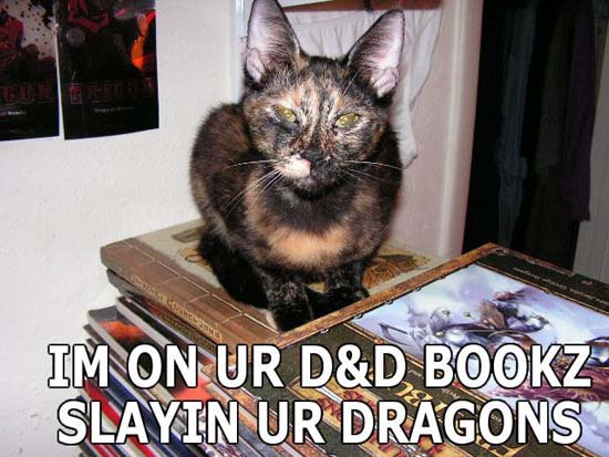 Im on ur D&D bookz slayin ur dragons