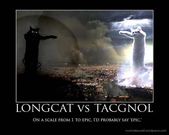 Longcat vs Tacgnol / On a scale from 1 to Epic, I'd probably say 'Epic.'