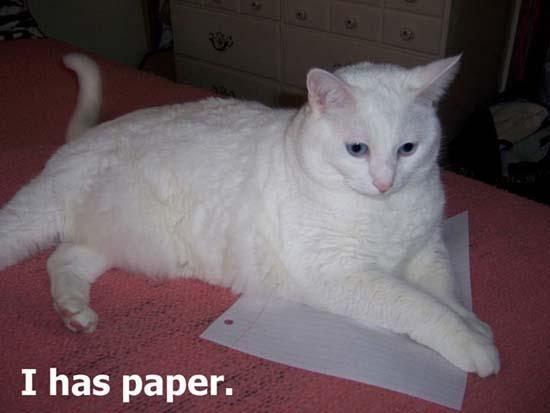 I has paper.