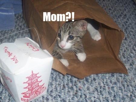 Mom?!