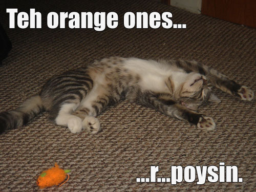 Teh orange ones... ...r... poysin.