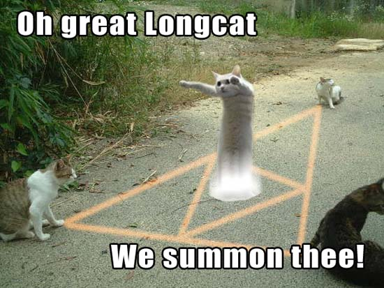 Oh great Longcat We summon thee!