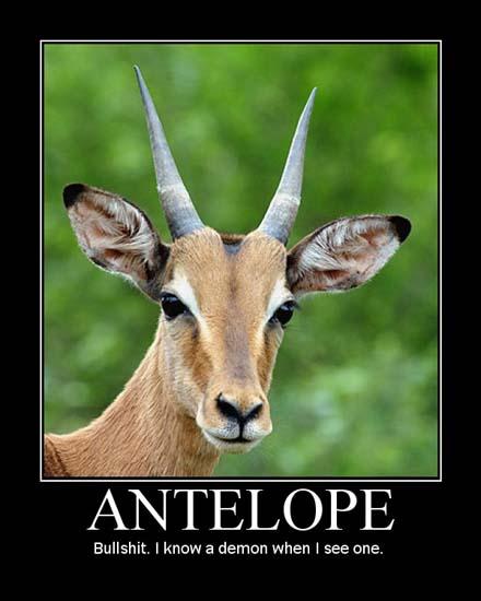 Antelope / Bullshit. I know a demon when I see one.