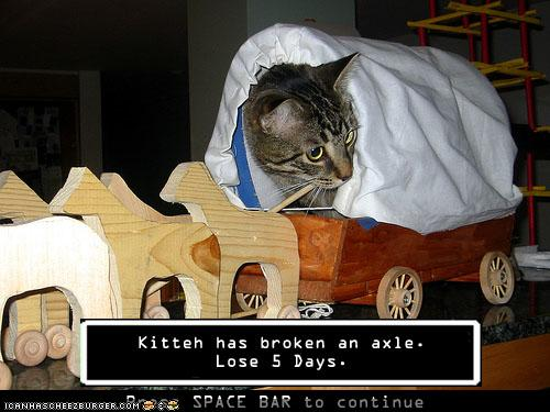 Kitteh has broken an axle. Lose 5 days.