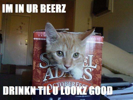 im in ur beerz drinkn til u lookz good