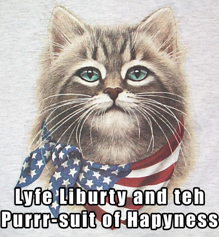 May The 4th Be With You Cat: Master Marf: Caturday: Liberty 4th Buried