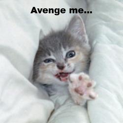 Avenge me...