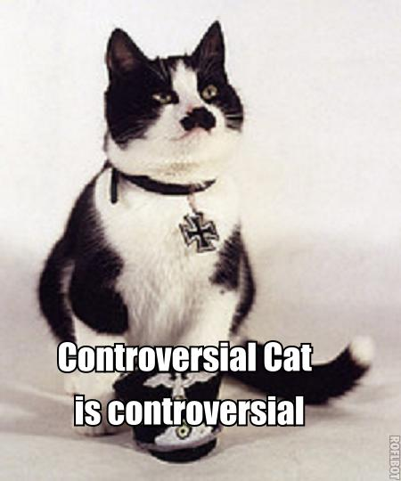 Controversial cat is controversial