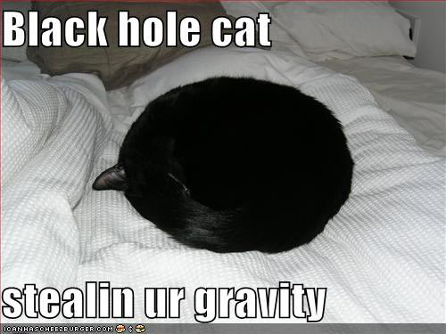 Black hold cat stealin ur gravity
