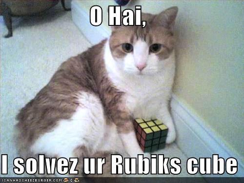O hai / I solvez ur Rubiks cube