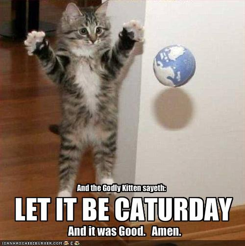 And the Godly Kitten sayeth: LET IT BE CATURDAY And it was Good. Amen.
