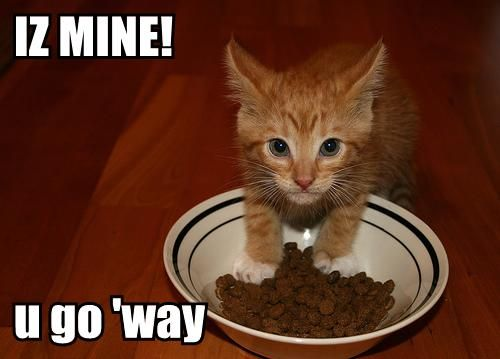 Iz mine! U go 'way