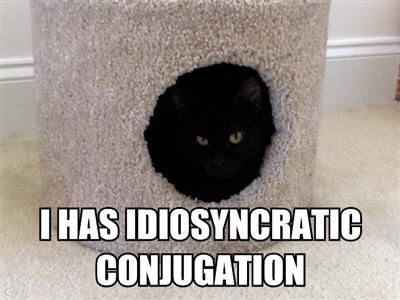 I has idiosyncratic conjugation