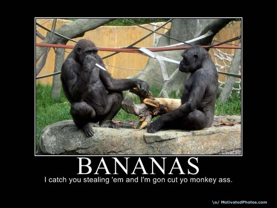 Bananas / I catch you stealing 'em and I'm gon cut yo monkey ass.