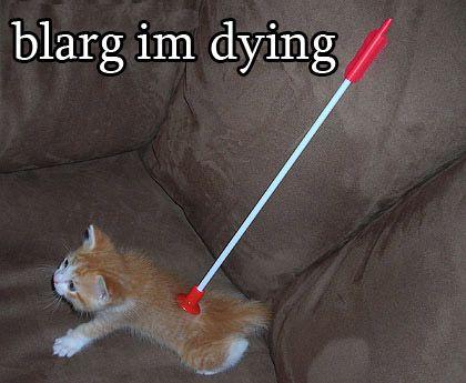 blarg im dying