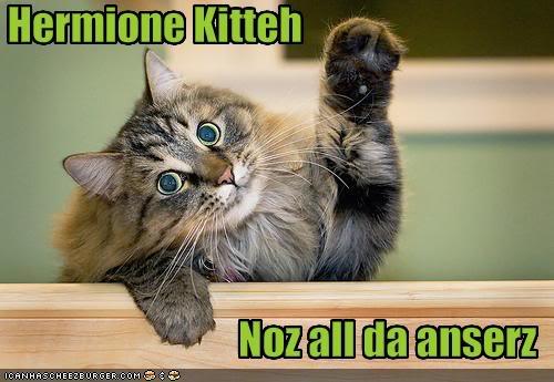 Hermione Kitteh noz all da anserz