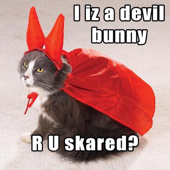I iz a devil bunny RU skared?