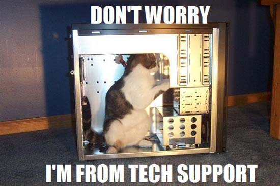 Don't worry, I'm from tech support