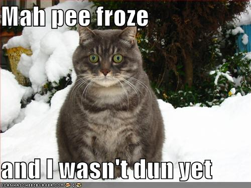 funny snow quotes. It#39;s been cold with snow on