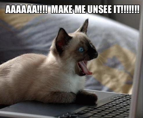 AAAAAA!!!! MAKE ME UNSEE IT!!!!!!