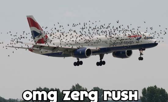 OMG Zerg Rush