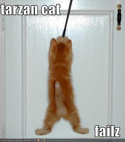 tarzan cat failz