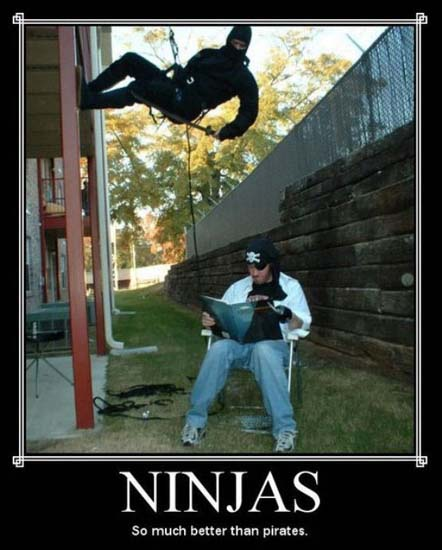 Ninjas / So much better than pirates.