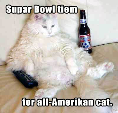 Supar Bowl tiem for all-Amerikan cat.